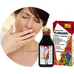 Floradix żelazo i witaminy tonik 250 ml