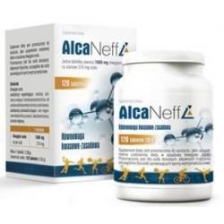 AlcaNeff 1000mg tabletki 120tabl.