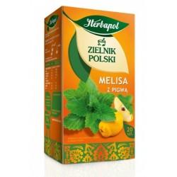 Zielnik Polski Melisa z pigwą saszetki 20 sasz.