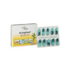 Avioplant 250 mg kapsułki 10 kaps.